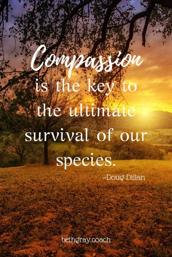 Compassion is the key to the ultimate survival of our species. Doug Dillan. bethgray.coach