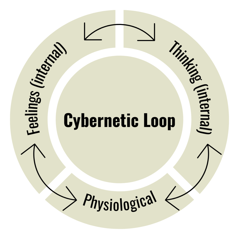 breaking the cybernetic loop, interrupting your cybernetic loop, feelings, thinking, physiological, external behaviour, your feelings influence your thinking, physical state