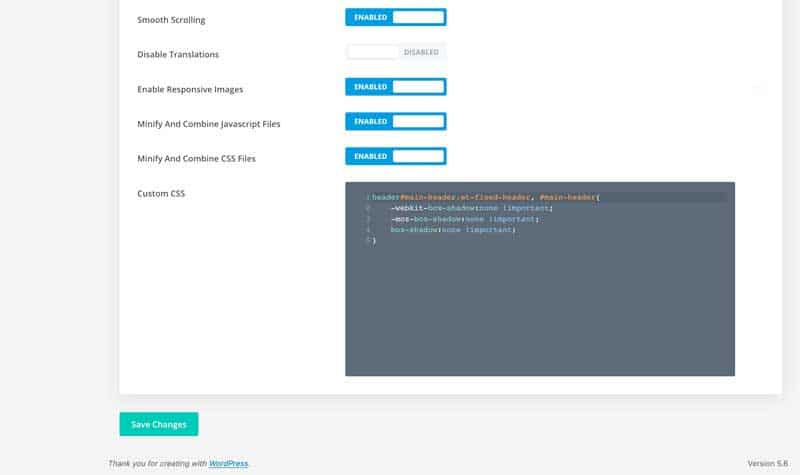 Add CSS to Divi theme