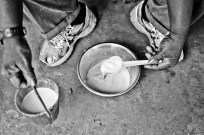 Milk from the fula village Jiroff