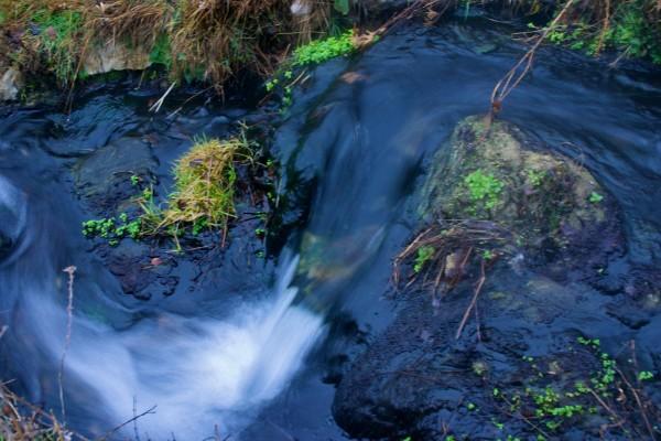 Beth Partin's photos, water shots