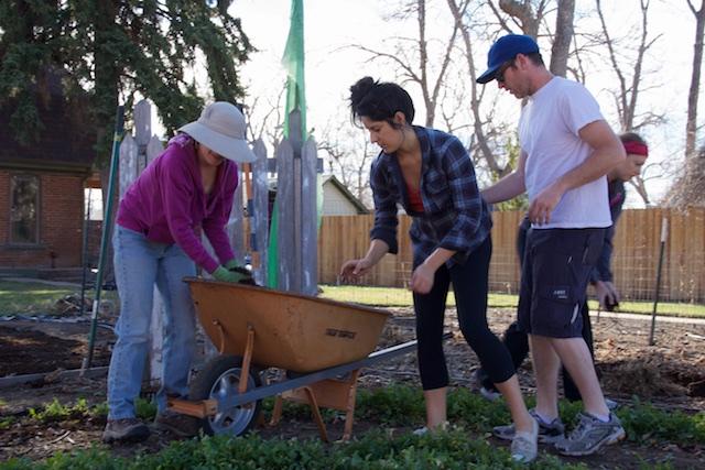 Urbiculture Sunnyside Garden spring planting Beth Partin 3