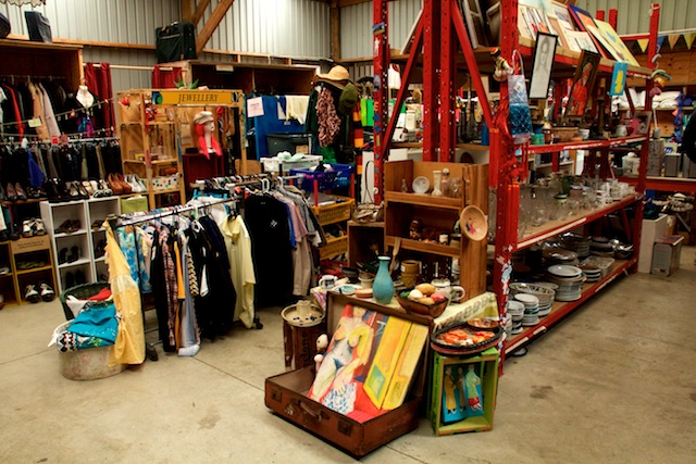Extreme thrift store Raglan NZ Sept 2015