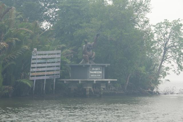tanjung-puting-orang-statue-2015-img_6767