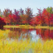 Fall Reds Reflection by Beth Sawickie http://bethsawickie.com/fall-reds-reflection #landscape #falllandscape #autumnlandscape #fallleaves