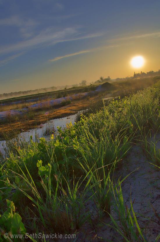 Foggy Morning by Beth Sawickie http://www.bethsawickie.com/sunrise-brings-mandala