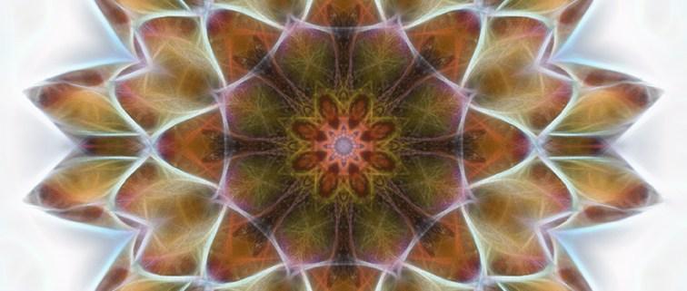 New Life Mandala by Beth Sawickie