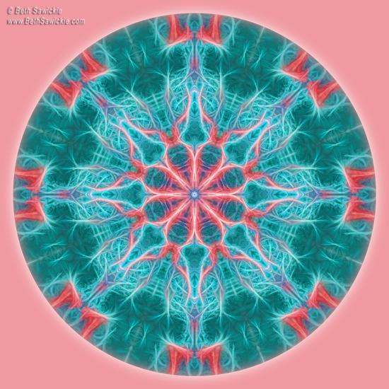 Pink Fractal Flower Mandala by Beth Sawickie http://www.BethSawickie.com/pink-fractal-flower-mandala