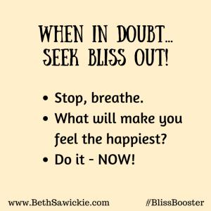 Seek Bliss Out - Beth Sawickie