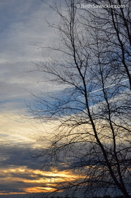Sunset Stroll February 7 2015 with Beth Sawickie