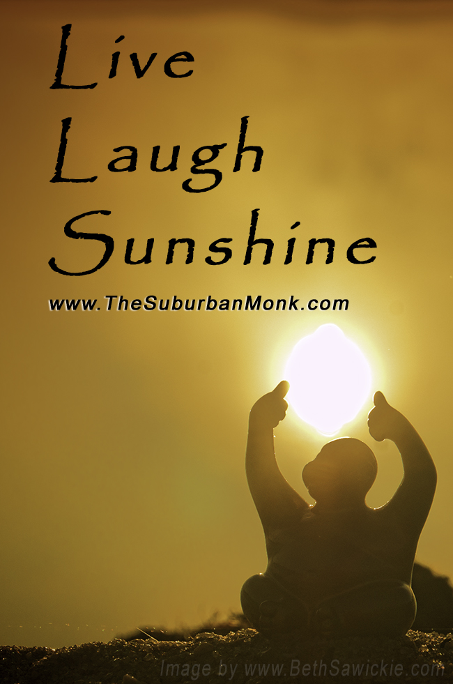 Syd Sunshine Suburban Monk by Beth Sawickie http://www.bethsawickie.com/meet-syd