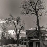 Whitesbog Worker's Houses in Winter by Beth Sawickie