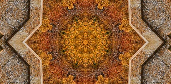 Windows to Autumn Mandala 2 by Beth Sawickie http://bethsawickie.com/windows-to-autumn-mandala-2