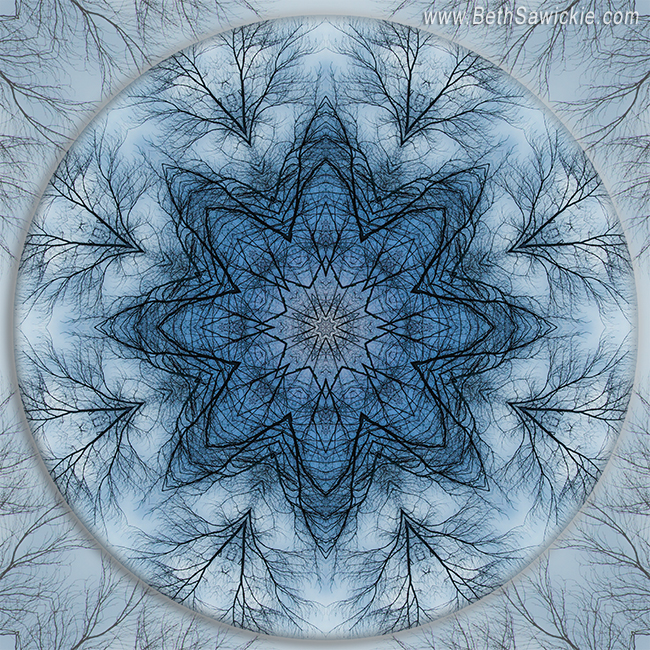 Winter Tree Mandala 5 by Beth Sawickie