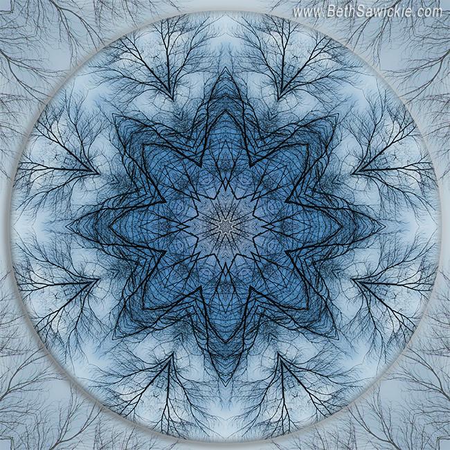 Winter Tree Mandala 5 by Beth Sawickie