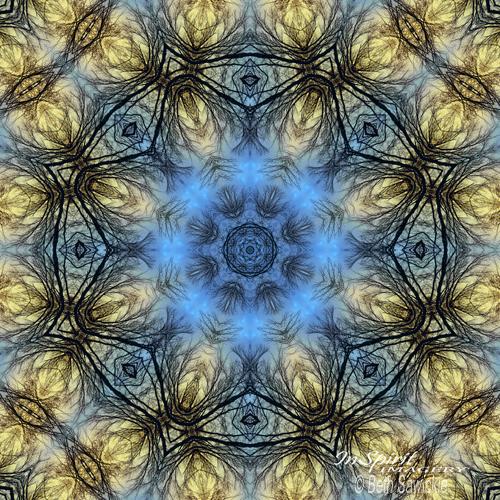 """Image by Beth Sawickie - www.BethSawickie.com """"Winter Tree Mandala"""""""