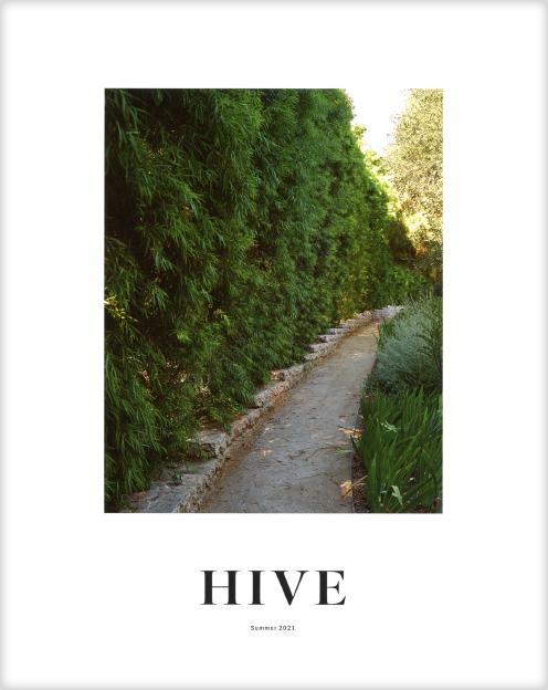 2021 07 Hive 00 v2