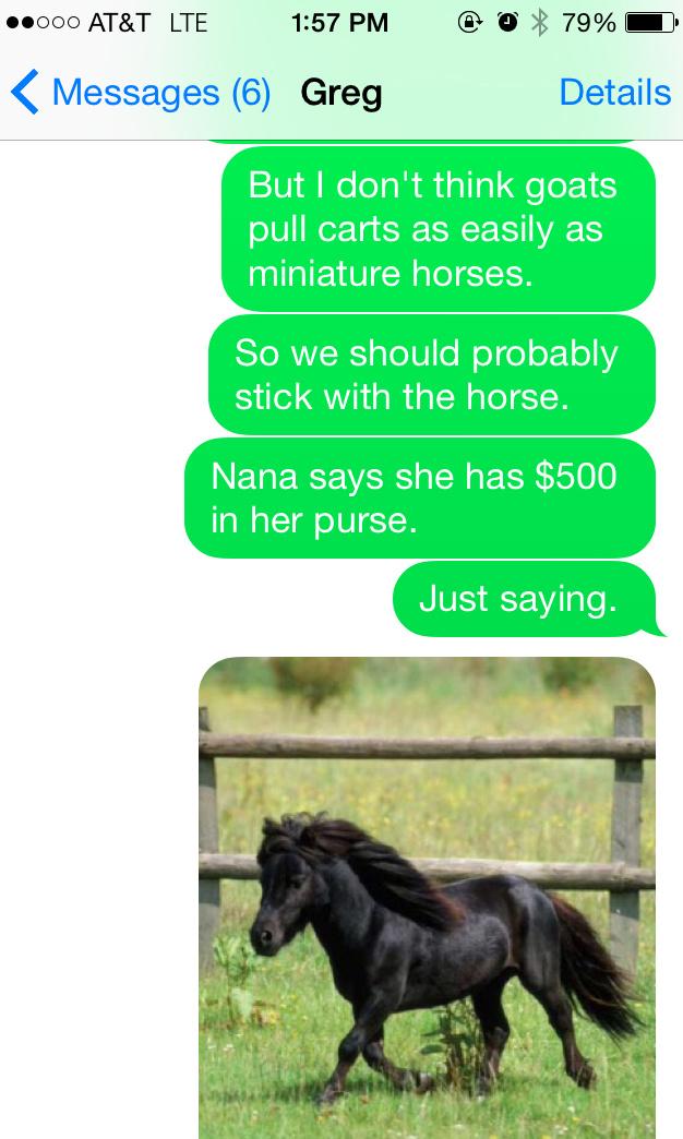 HorseText2