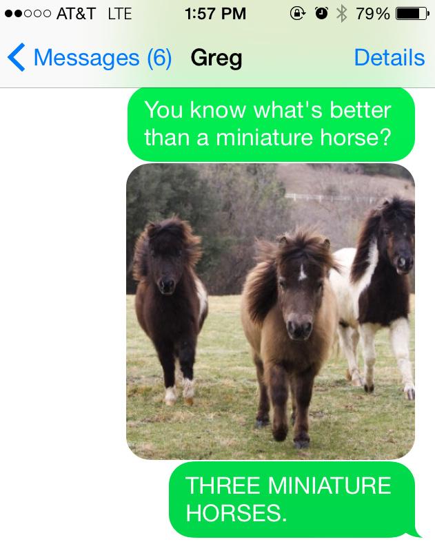 HorseText3