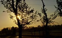 Before sunset at village