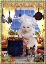 gato-cozinhando_pq.jpg