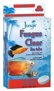 Jungle Fungus Clear