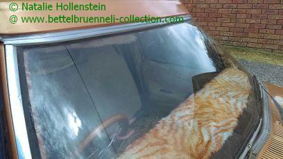 Holden HQ Belmont Panel Van