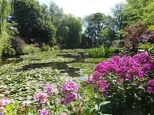 Monet-Pond