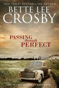 Passing Through Perfect - Ebook