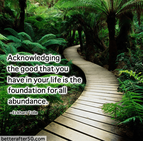 Acknowledging the good that you have in your life is the foundation for all abundance. QOTD
