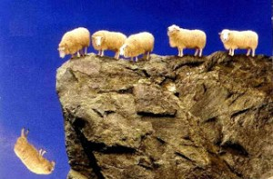 girlfriend sheep