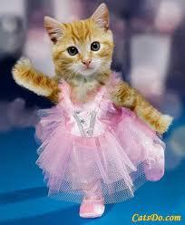 ballet school drop out