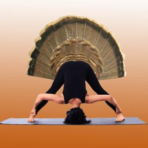 turkey-yoga