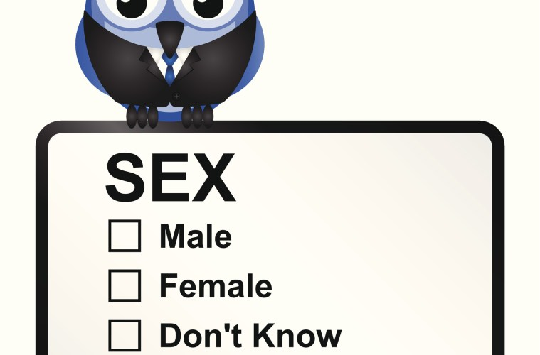 celibate