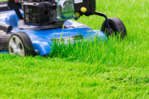 A Moving Blue Lawnmover Cutting Green Grass