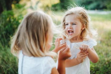 Two small angry girl friends or sister outdoors in sunny summer nature, pulling hair.