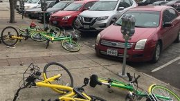 Public bikes left lying around in Dallas Texas, personally I think the cars look a lot worse