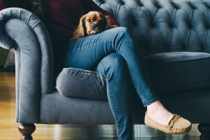 The Mental Health Benefits of Having a Pet