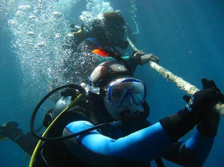 underwater-2141072__480