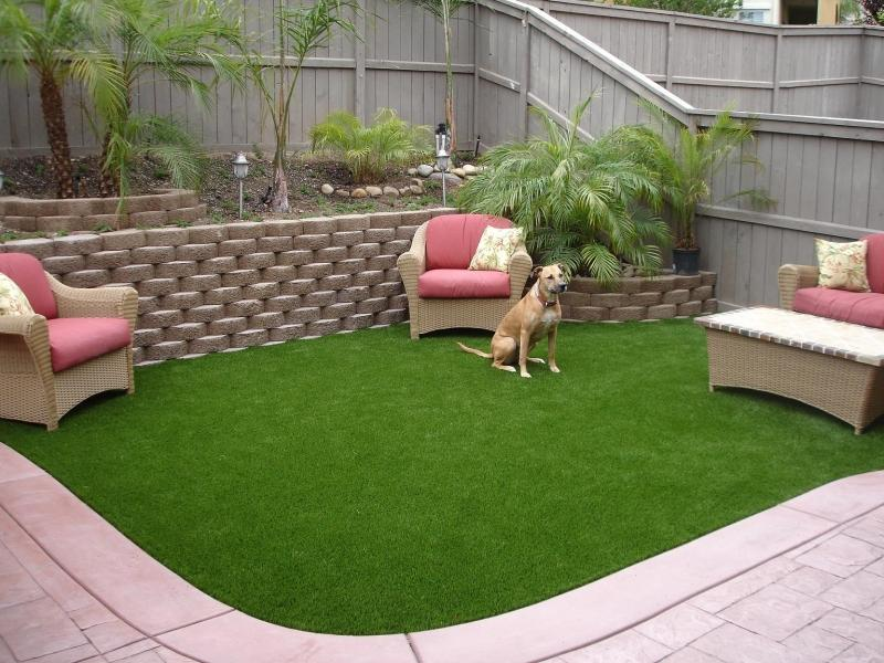 4 Ways to Help Your Pet's Allergies - Better HouseKeeper on Artificial Grass Backyard Ideas  id=70186