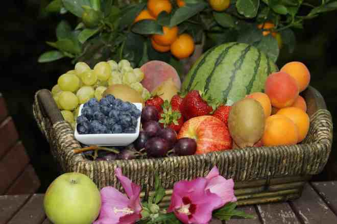 basket of a variety of fresh fruit