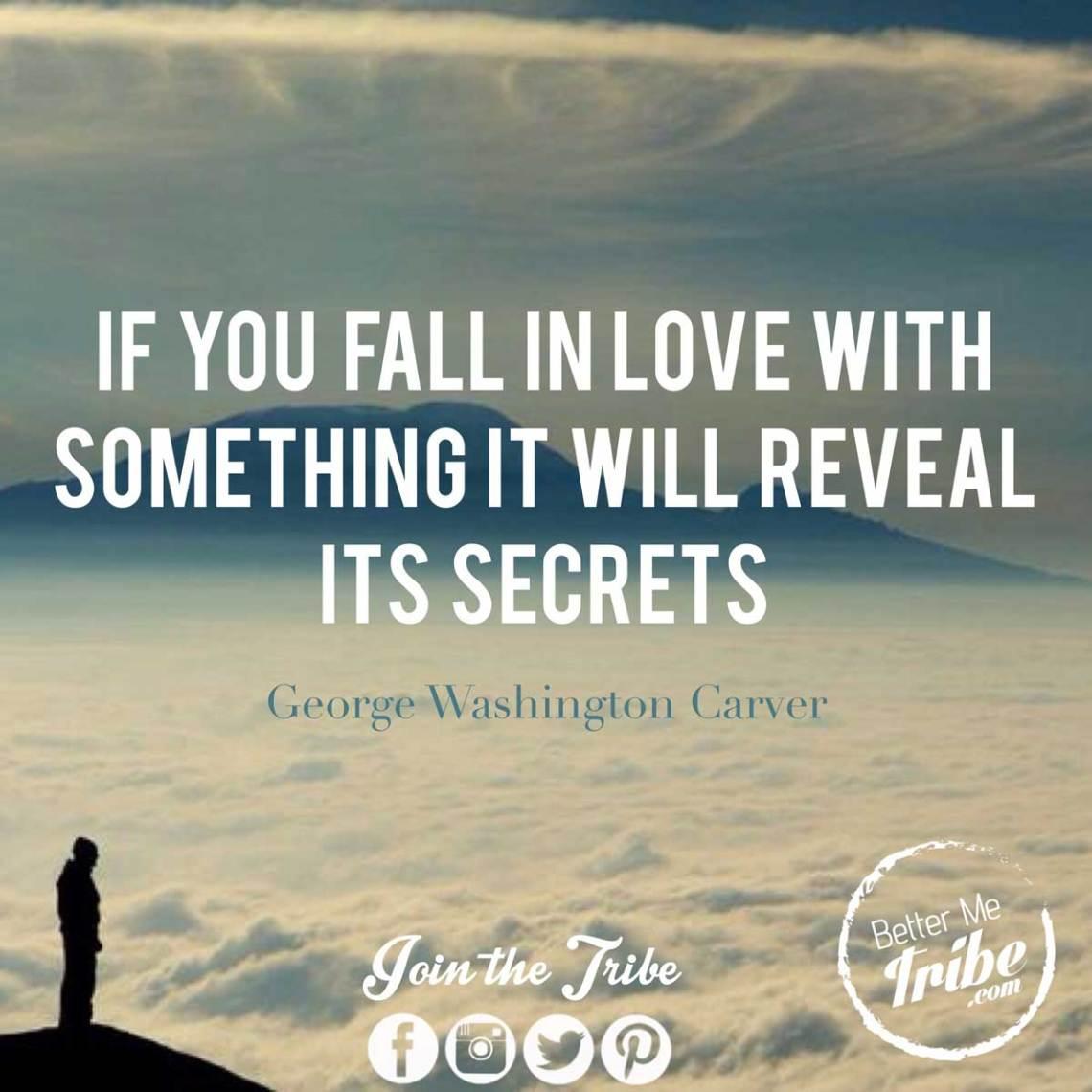 FallinLove-secrets-web