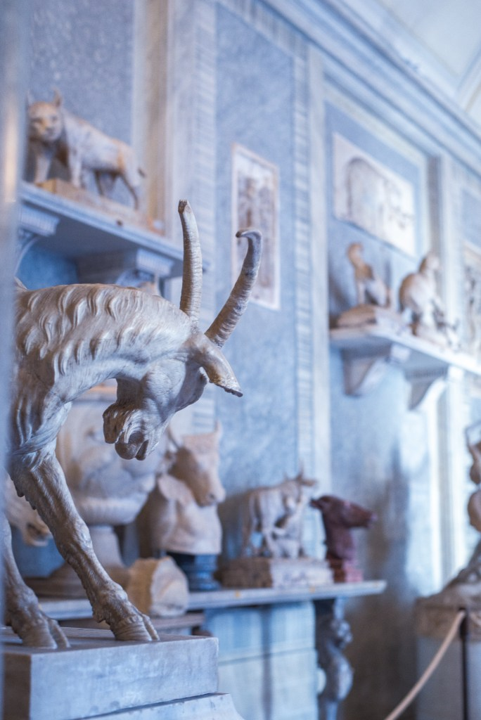 Vatican-museum-experience-free-sunday-most photogenic places in Rome
