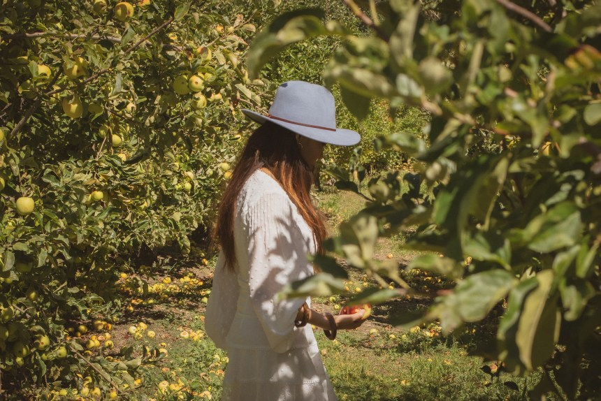 Julian San diego county apple farm