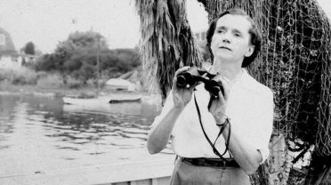 An Earth Day remembrance of Rachel Carson who gave birth to the modern  environmental movement – Fund for a Better Waterfront