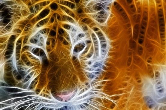 fractal-art-995167_1280