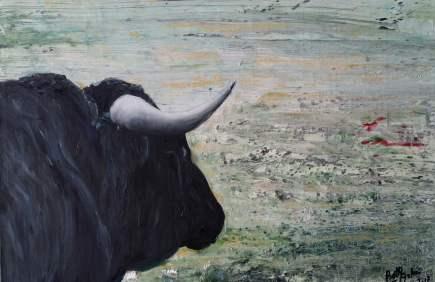 toro nº2