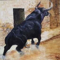 toro nº 6
