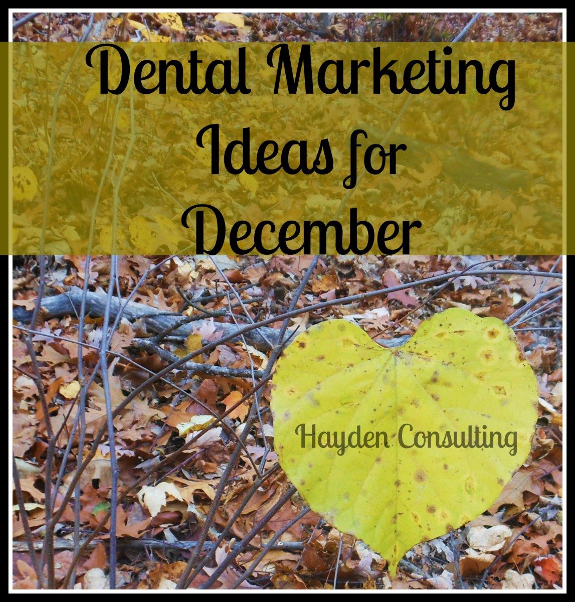 Marketing ideas for dentists from Hayden Consulting