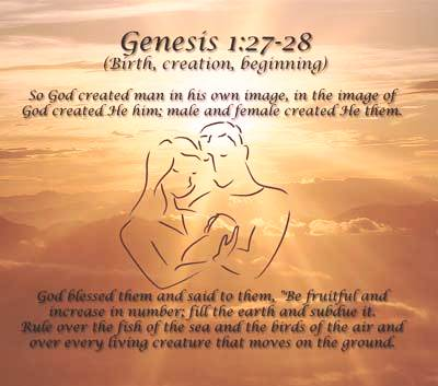 Marriage sex in the bible